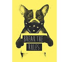 Rebel dog (yellow) Photographic Print