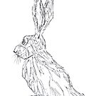 HARE STARE by Hares & Critters