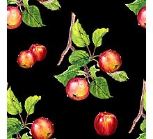 red apples on black Photographic Print