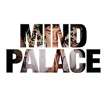 Mind Palace Photographic Print
