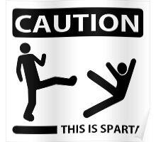 Programmer - Caution This is Sparta Poster