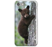 Bear Cub Climbing a Tree iPhone Case/Skin