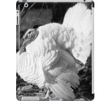 Black and White Turkey iPad Case/Skin