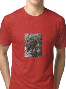 Iced Trees Tri-blend T-Shirt