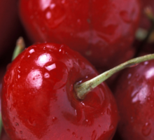 Big Red Cherries  Sticker