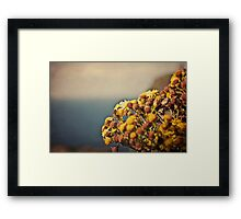 Like It Used To Be Framed Print