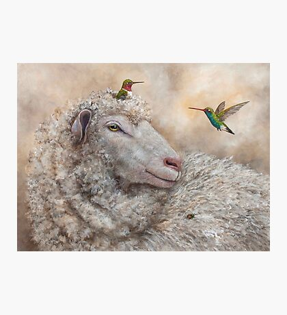 Baa, Hum, Bug Photographic Print