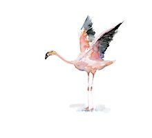 Flamingo Watercolor Zen painting by Zendrawing