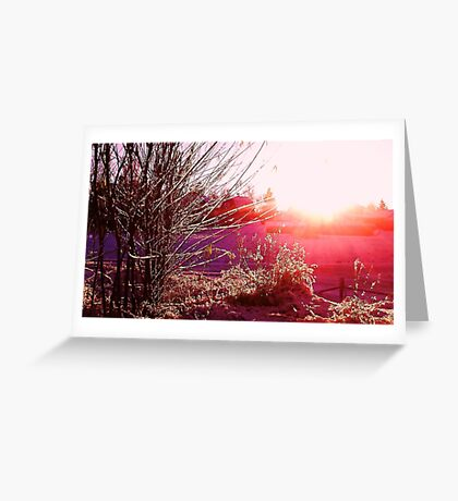 Psychedelic Winter Greeting Card
