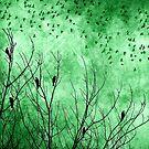 Green Bird Scarf by debsrockine