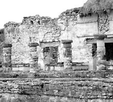 Tulum Mayan Ruins - Mexico Original Black and White Photograph by GeminiMoon