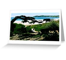 #225  Carmel Beach In Color Greeting Card