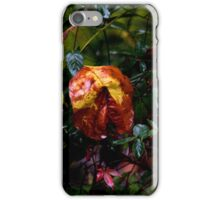 Drenched by Hurricane Matthew iPhone Case/Skin