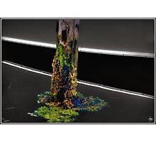 Pier Colors Photographic Print