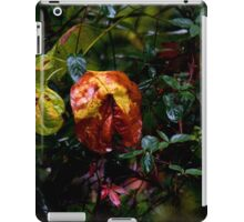 Drenched by Hurricane Matthew iPad Case/Skin