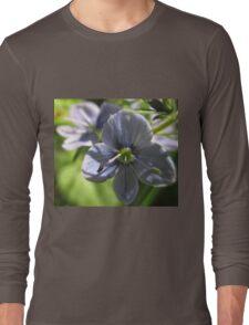 Spring Blues Long Sleeve T-Shirt