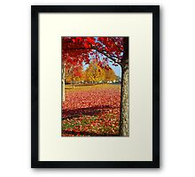 Autumn in New England Framed Print