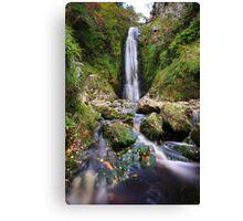 Glenevin Waterfall Canvas Print