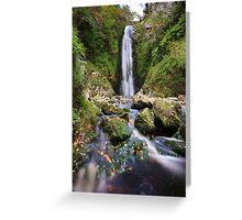 Glenevin Waterfall Greeting Card