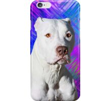 White American Pit Bull Terrier Dog iPhone Case/Skin