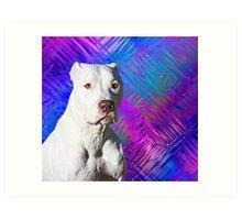 White American Pit Bull Terrier Dog Art Print
