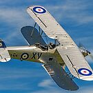 Hawker Hind K5414/XV G-AENP banking by Colin Smedley