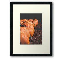 Pumpkins 14 Framed Print