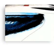 beach line Canvas Print