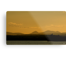 Geese over Derryveagh mountains at Twilight Metal Print