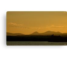 Geese over Derryveagh mountains at Twilight Canvas Print
