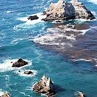 Big Sur by Miriam Gordon