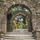 Gateway to Glendalough  (Wicklow - Ireland) by TonyCrehan