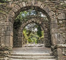 Gateway to Glendalough  (Wicklow - Ireland) by TonyCrehan