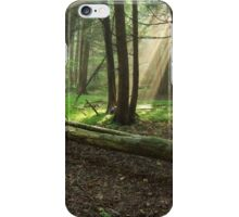 Vista Light iPhone Case/Skin
