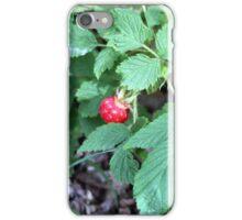 Raspberry Bush iPhone Case/Skin
