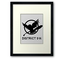 district 9 3/4 Framed Print