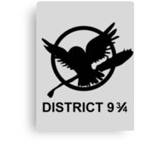district 9 3/4 Canvas Print