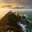 Nugget Point Lighthouse by Nick Skinner