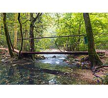 Wooden bridge over river Photographic Print