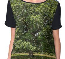 Centennial oak tree Chiffon Top