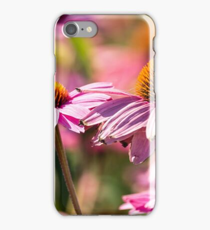 Gerber flowers in a garden iPhone Case/Skin