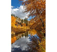 Susan River Autumn Reflections Photographic Print