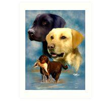 Labrador Retrievers Art Print