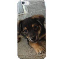 Samara: Lazy Curiosity 2 iPhone Case/Skin