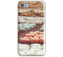 Pumpkins 21 iPhone Case/Skin
