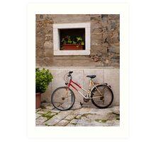 Bicycle and Plants Art Print