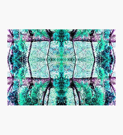 Summer color Aqua pastel green Photographic Print