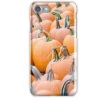 Pumpkins 25 iPhone Case/Skin