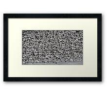 Snowstorm Framed Print