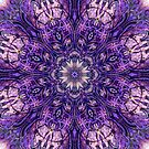 Purple Magic 2 by haymelter
